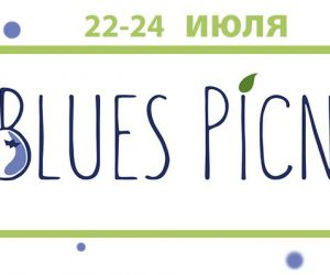 Blues Picnic